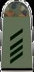 Army Specialist 2nd Class