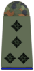 Army Staff Captain