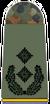 Army Lieutenant Colonel