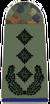 Army Colonel