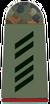 Army Specialist 1st Class