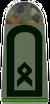 Army Master Sergeant