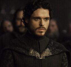 Koning Robb Stark