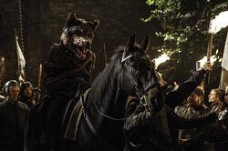 Robb Stark Rode Bruiloft