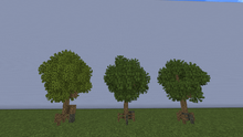 MangroveTreeM