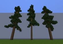 RedwoodM