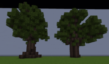 CottonwoodL