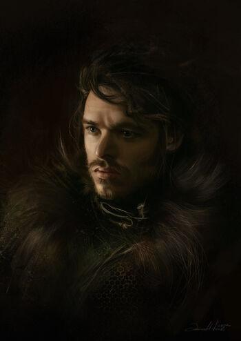 Robb Stark (powieść)