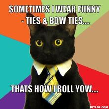 Resized business-cat-meme-generator-sometimes-i-wear-funny-ties-bow-ties-thats-how-i-roll-yow-36d2be
