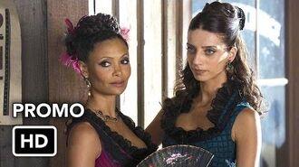 "Westworld (HBO) ""Critics"" Promo HD-0"