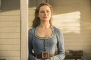 Westworld 2015 promotional photo 8