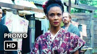 """Westworld 2x06 Promo """"Phase Space"""""""