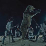 Kiksuya Bear standing still 01