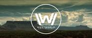 Dd site discover ww vid logo
