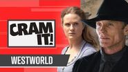 Everything You Need To Know About Westworld (Seasons 1-2) CRAM IT