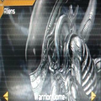 Warriordome