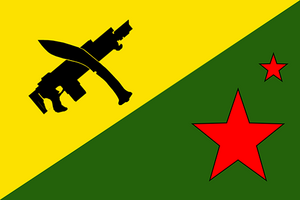 PEEMO flag Mk1