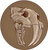Brotherhood of the Mamoth Chapter Badge