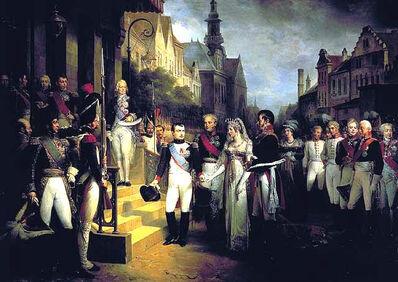 Napoleon Arrives in Vienna