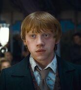 Ron-weasley-6