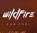 Wildfire (Sam Tsui)