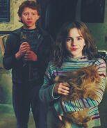 Hermionecatron
