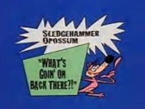 Sledgehammer O' Possum in - What's Goin' on Back There