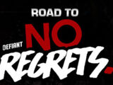 Road to No Regrets (2018)