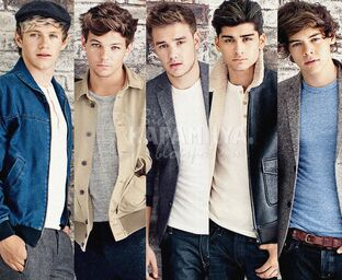 One-direction-one-direction-33477423-1547-1271