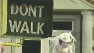 """Classic Sesame Street - The Sign Says """"Don't Walk"""""""
