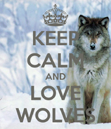 Keep-calm-and-love-wolves-134