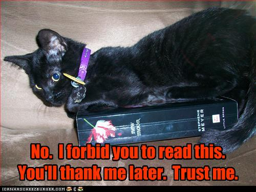Funny-pictures-cat-does-not-want-you-to-read-book