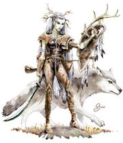 Druid-20071202-031538