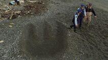 Taniwha footprint
