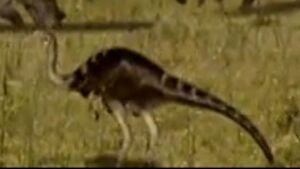 Ornithomimus in When Dinosaurs Roamed America