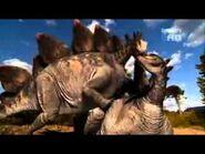 WDRA Stegosaurs