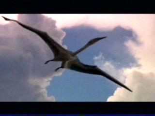 File:Large pterosaur.jpg