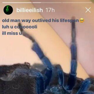 Billie's instagram story