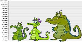 DEDSEC17 Swampy Allie & Cranky HEIGHT CHART