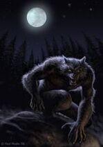 Werewolf f