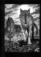 Werewolf Dark Ages 2