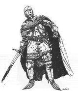 Рыцарь хаоса