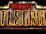 Trinity: Battleground