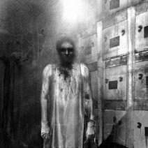 Araya - morgue