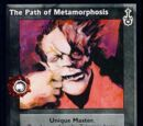 Path of Metamorphosis