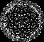 SymbolVariantAssamites