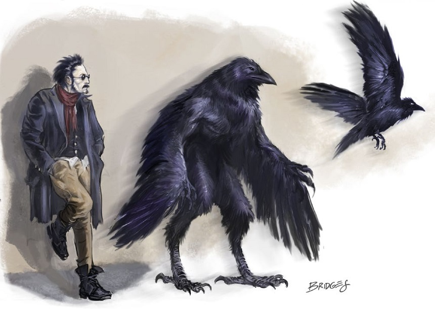 Image result for corax W20