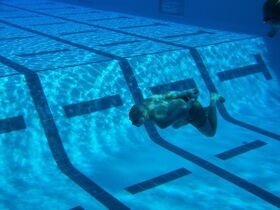 Diving Toy