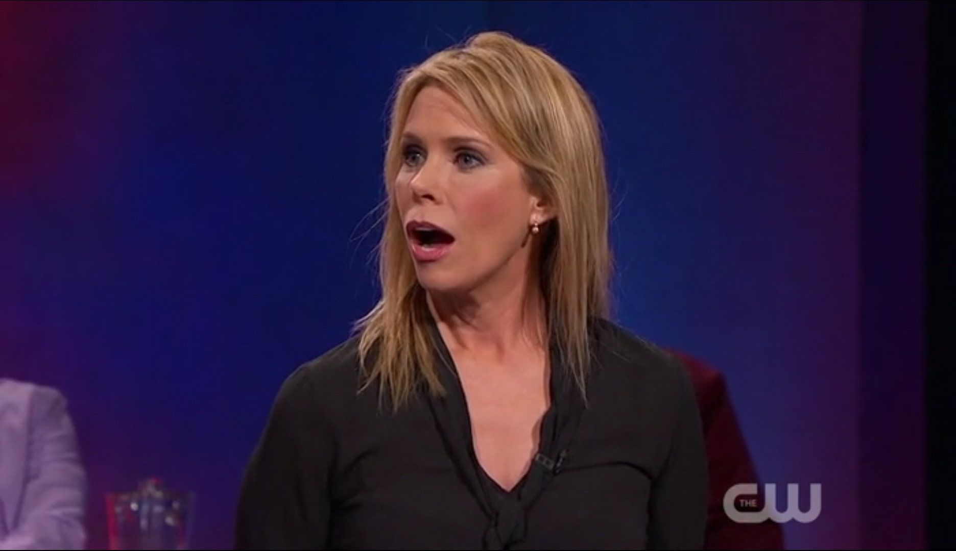 Cheryl Hines born September 21, 1965 (age 53) nudes (15 foto and video), Sexy, Hot, Feet, bra 2019