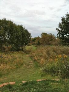 Prairie open03